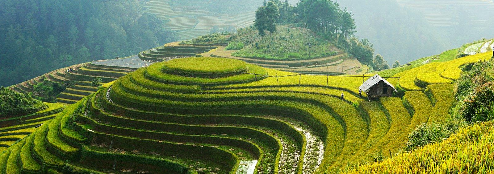 6 Most Interesting Vietnam Blogs Written For Expats