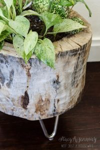 hoozing_tree stump planter